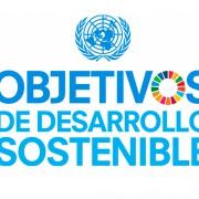 """""""Objetivos de Desarrollo Sostenible (ODS) en la agenda de las empresas españolas"""" - Temas medioambientales (presencial u on line)"""